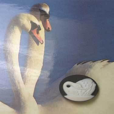 cameo_swans_3.jpg