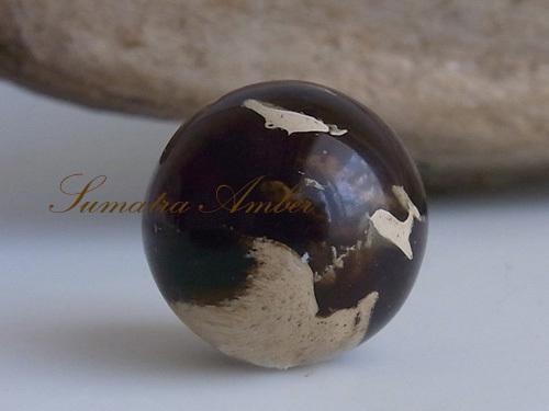 amber-1.jpg