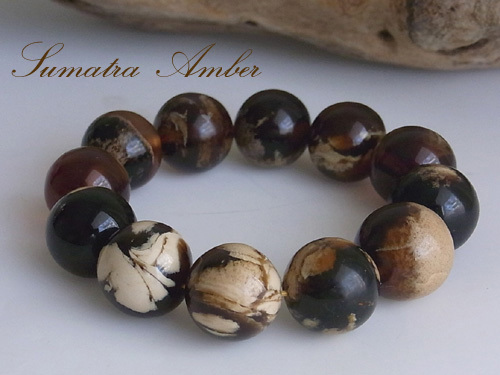 amber-2.jpg
